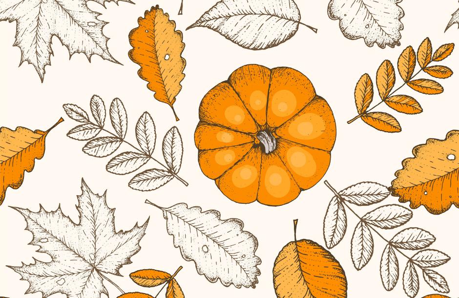 Sweet & Savory Pumpkin Recipes for Fall
