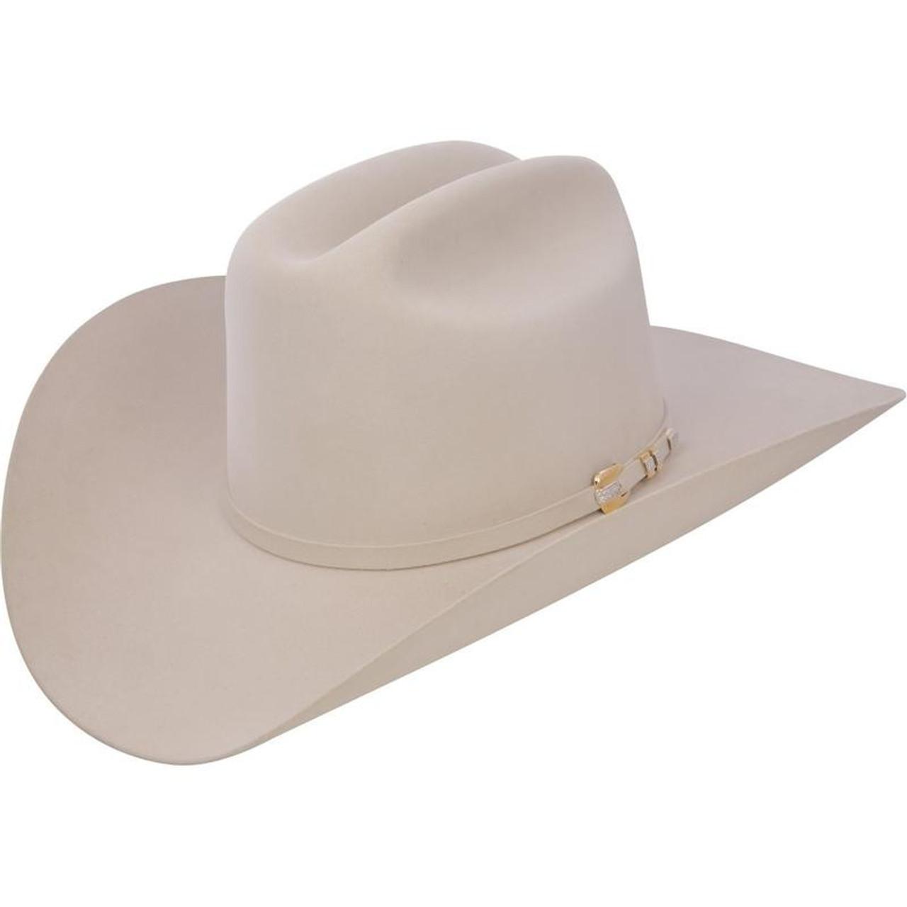 bb76e635 1000X Stetson Diamante Hat Made With Premium Chinchilla/Beaver - Silver  Belly