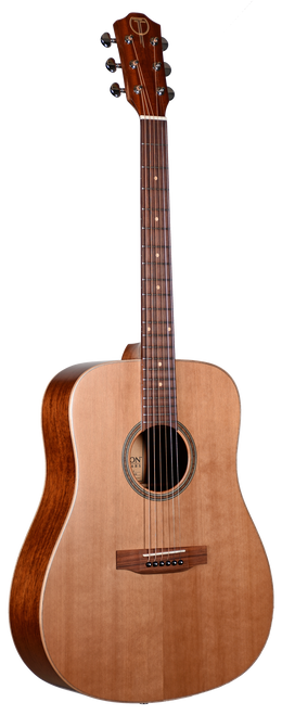Teton Guitar STS105NT Front View