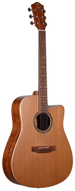 Teton Acoustic Guitar STS105CENT Front View