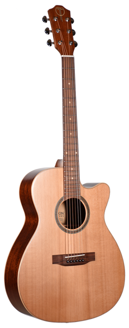 Teton Acoustic Guitar STG105CENT-TF Front View