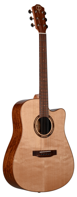 Teton Acoustic Guitar STS110CENT Front View
