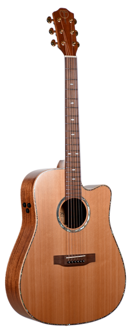 Teton Acoustic Guitar STS205CENT Front View