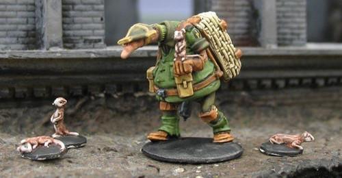 Crusader: Milwer Owun (Squirrel Handler)