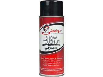 Show Touch-up Spray