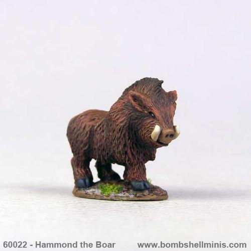 60022 - Hammond the Boar