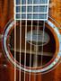 Stage Exotic Series Guitars Mahogany - Mahogany Concerto E (Electric)