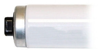 "T12 117"" Cool White High Output Fluorescent Lamp"