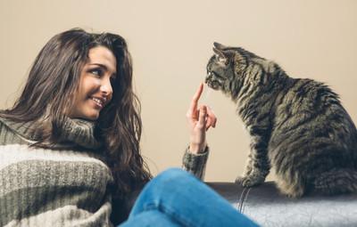 I love you! In Cat Language