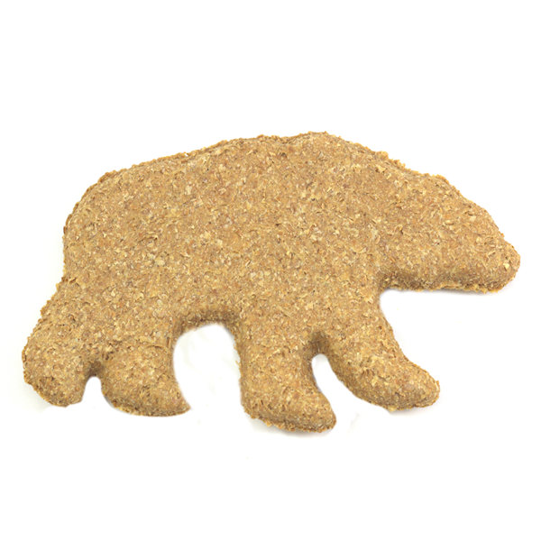 pic-white-background-single-bear.jpg