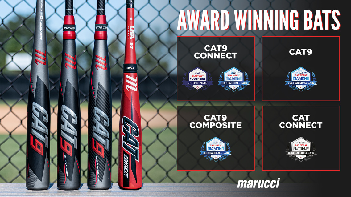 Our 2021 Bat Digest Award Winners
