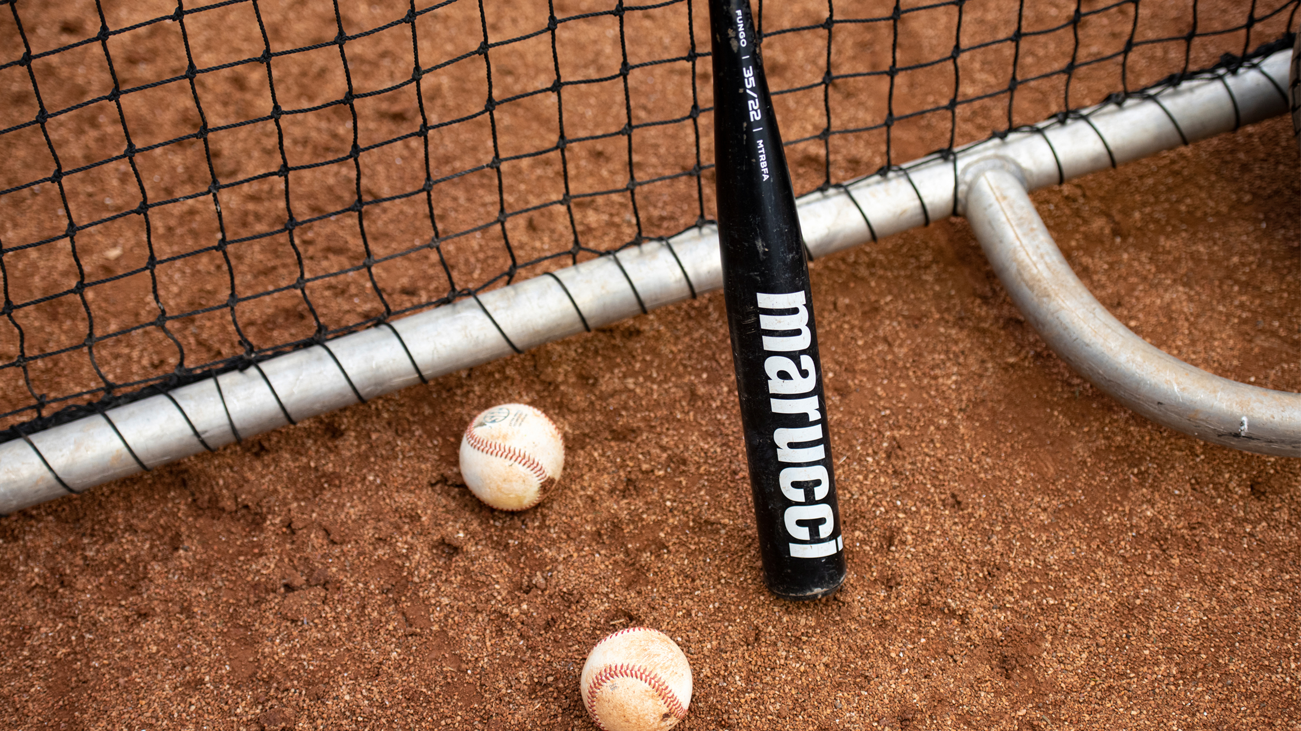 Why You Should Use A Fungo Bat