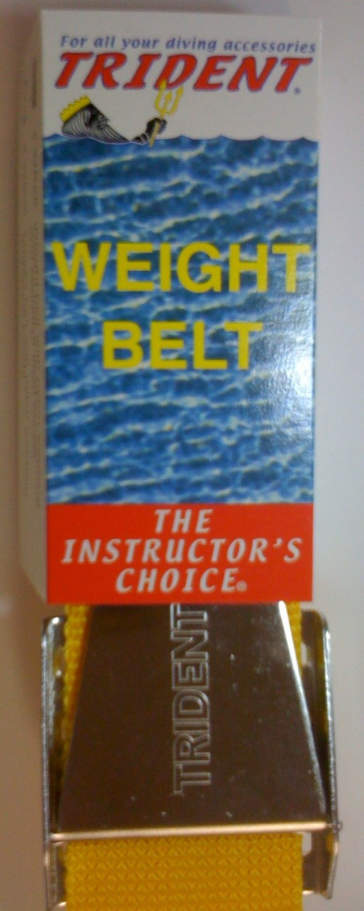 Weight Belt 58in Stainless Buckle