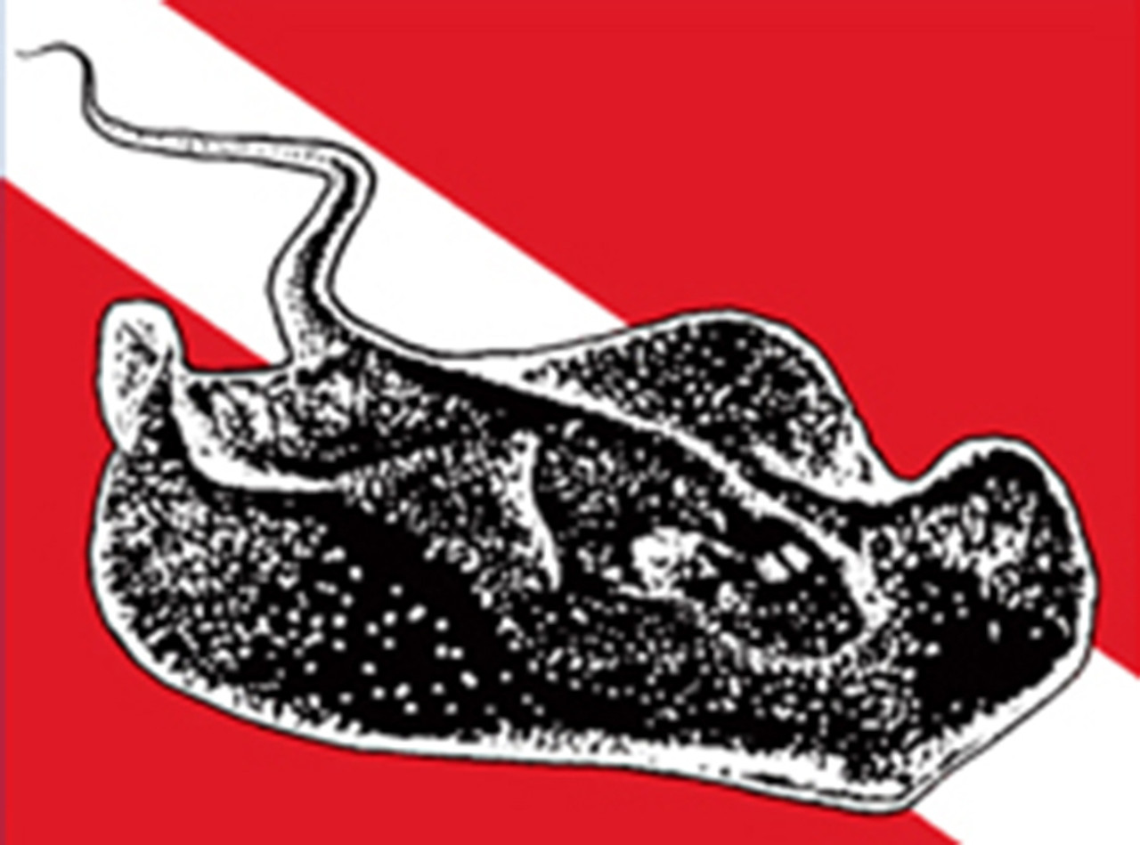 Sting Ray Dive Flag Bumper Sticker Decal