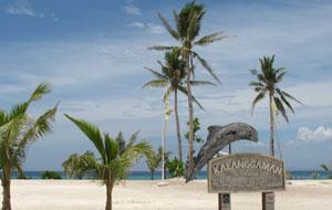 Palau Adventure 2020