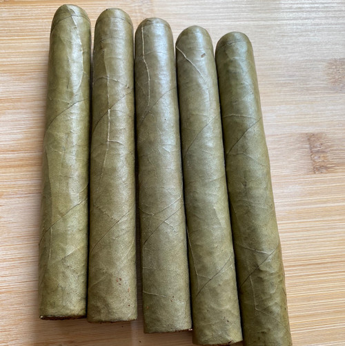 Tampa Candela 5 packs