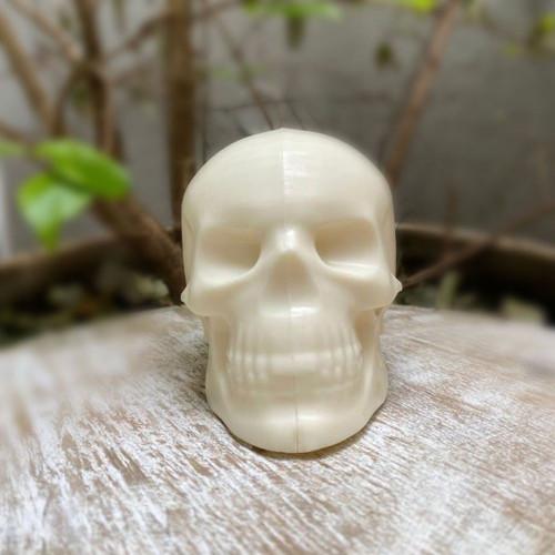 Skull  -  3 Part Mold