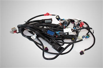 Ilmor Engine Wiring Harness Assembly (PL00364)