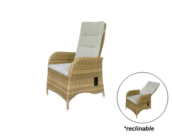 Ryan Recliner Chair (clearance)