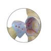 4-Stage Degenerative Bone Diseases of the Hip Set