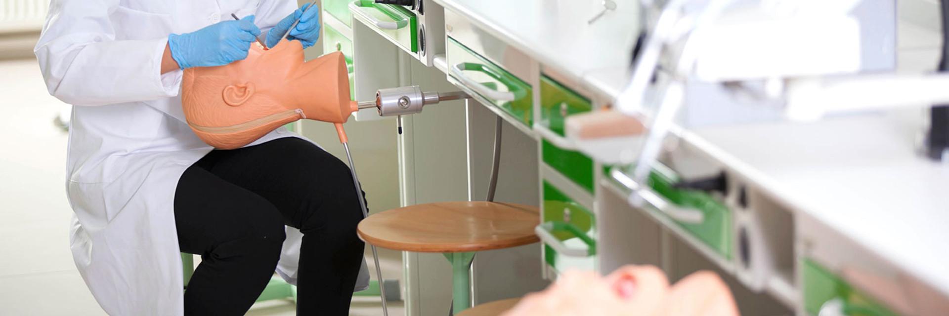 Shop dental models and simulators