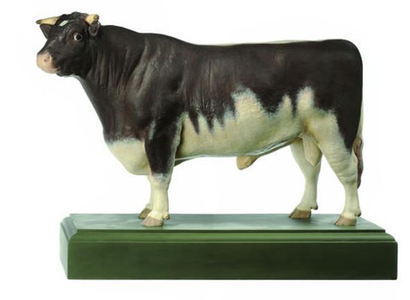 "Shorthorn-Bull ""Roan Sam"""