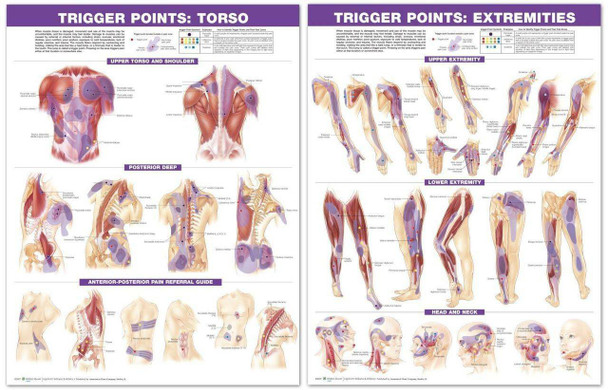 Trigger Point Charts, set of two