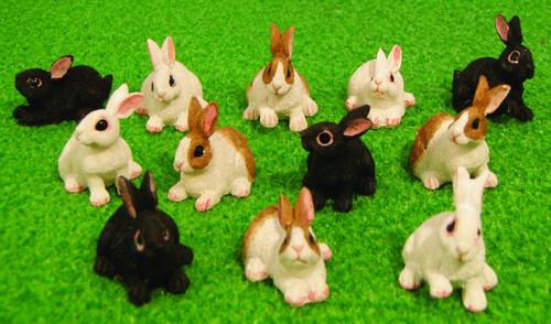 Rabbit DA016