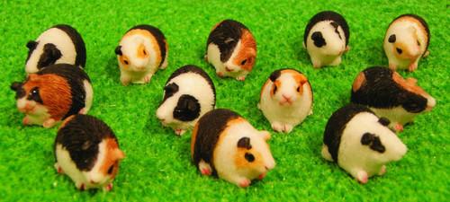 Guinea Pigs, 1 piece DA015