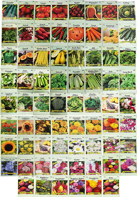 Black Duck Brand Set of 70 Veggie and Flower Seed Packets Several Varieties Including Forget Me Not!