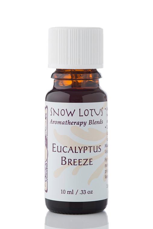 Eucalyptus Breeze - Esthetic Essential Oil Blend