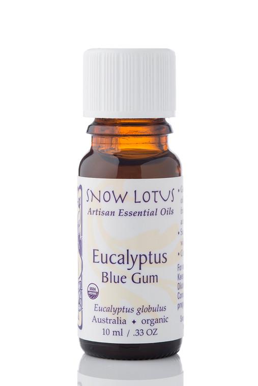 Eucalyptus, Blue-Gum Essential Oil  - Organic