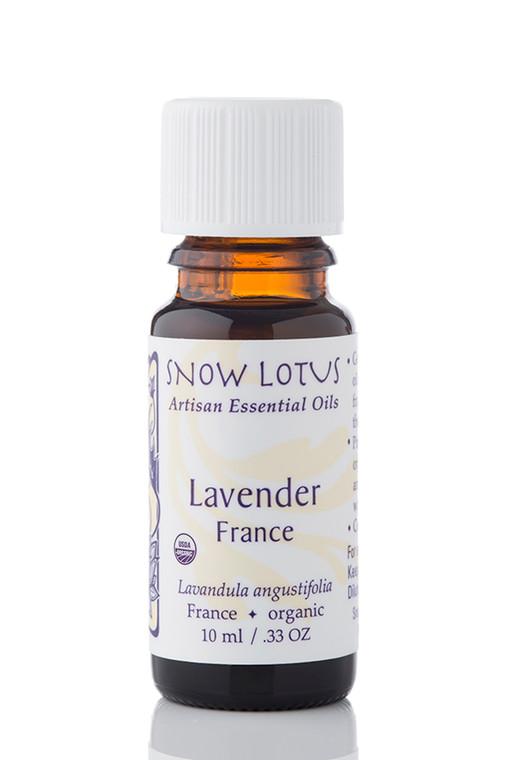 Lavender, France Essential Oil - Organic