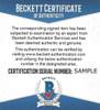 "Joltin Jeff Chandler Autographed 8x10 Photo ""Best Wishes"" Beckett BAS #D12861"