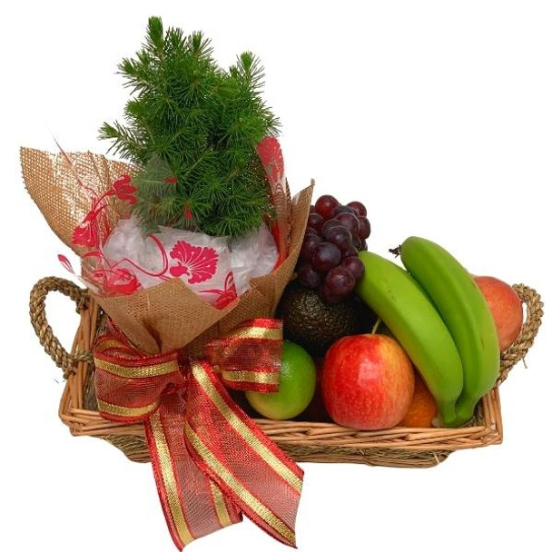 Christmas Baskets - Mini Fruit Basket with Christmas Tree