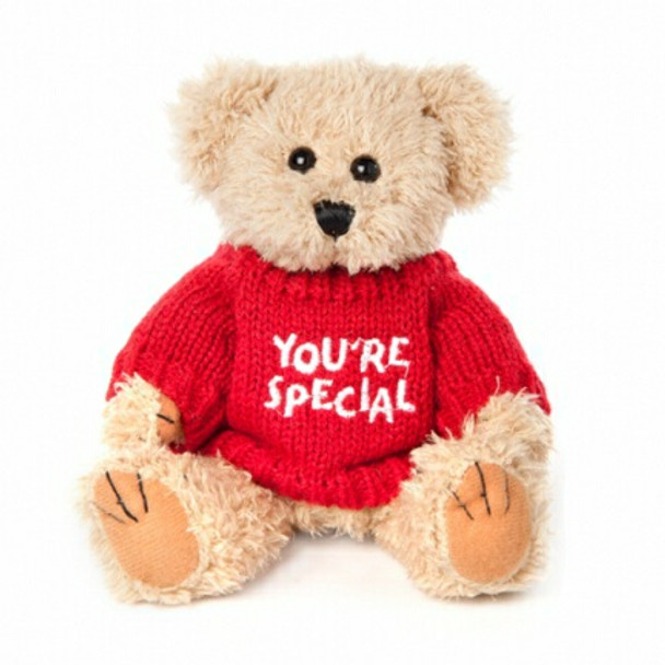 """Message Bear - """"You're Special"""""""