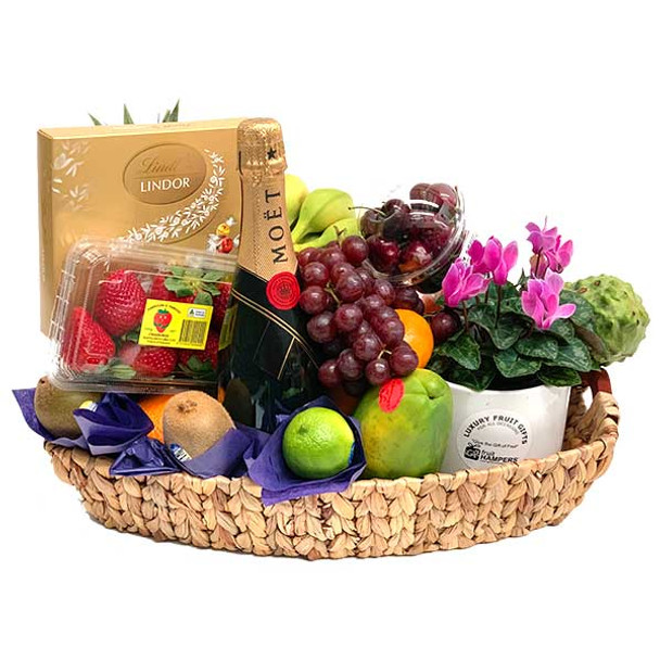 Luxury Fruit Basket - Champagne Gift + Chocolates + Flowering Plant