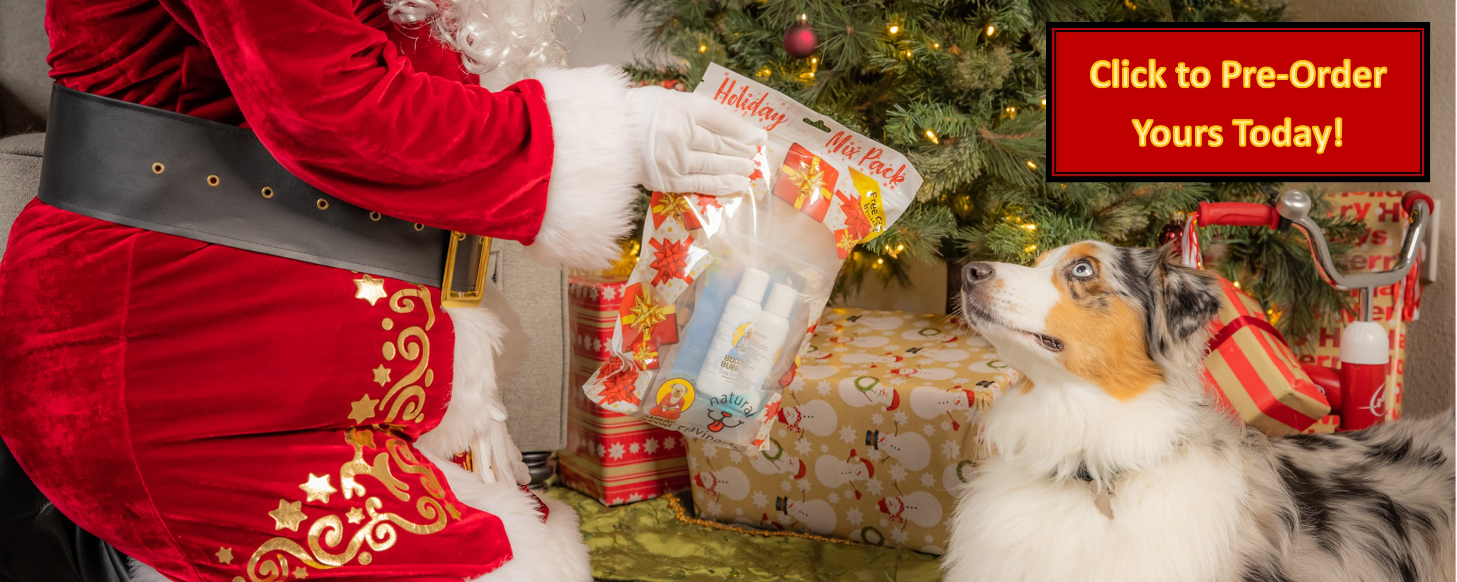 Santa Claus Giving Dog a Barking Buddha Holiday Mix Pack Gift for Dogs