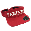 FlexFit 8110 Flexfit Visor with Panthers Silicon Transfer