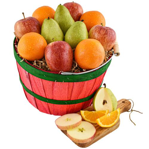 Bountiful Basket