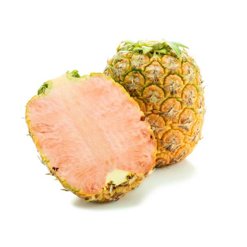 PinkGlow™ Pineapple - 1 count
