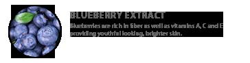 ingredients-blueberryextract.png