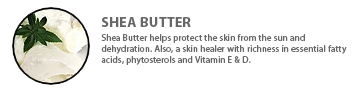 ingredients-sheabutter2020.png