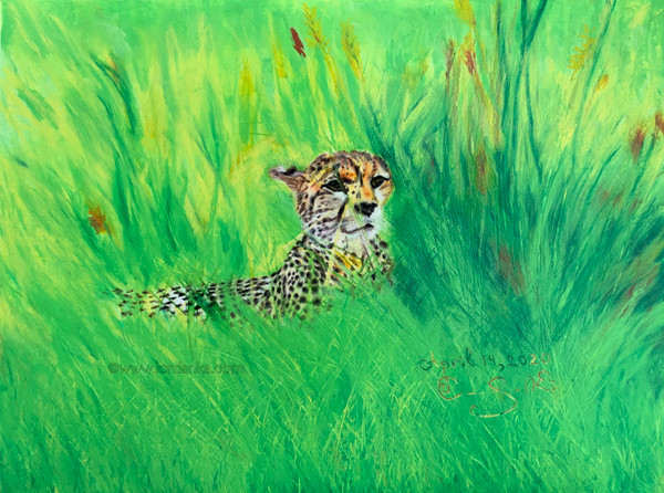 Cheetah Pastel Sketch