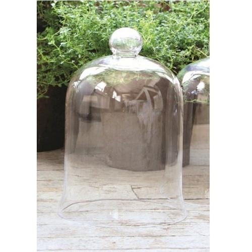 Medium Bell Jar Cloche