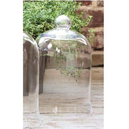 Small Bell Jar Cloche