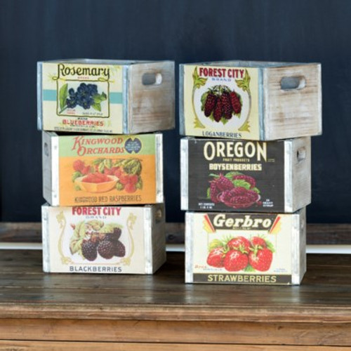 Assorted Berry Boxes Set of 6