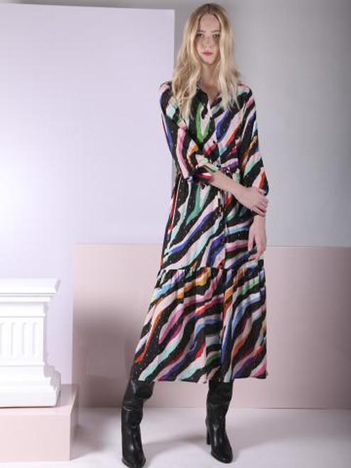 Button Down Zebra Dress