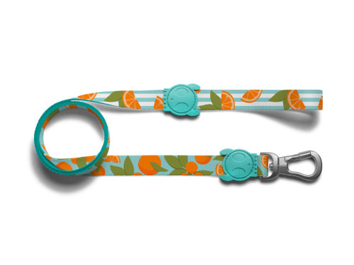 Zee Dog Leash - Florida