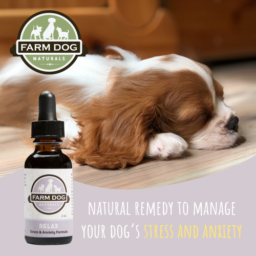 Farm Dog Naturals RELAX Stress & Anxiety Formula